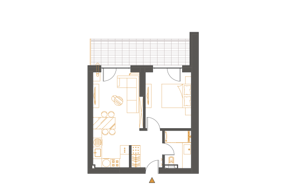 Apartament 2 Camere - 2C1